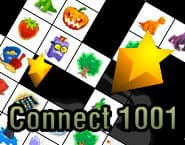 Connect 1001